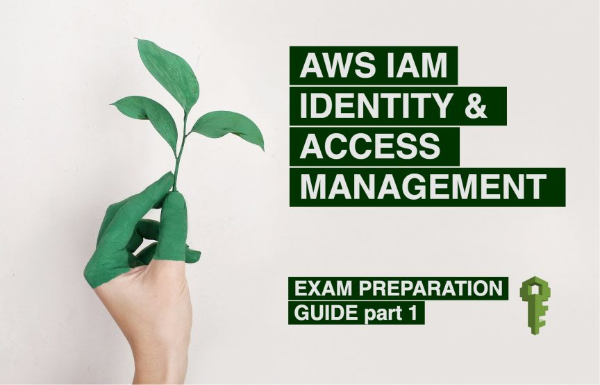 IAM Identity access management exam questions and guide